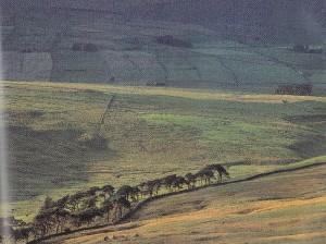 big hills 1
